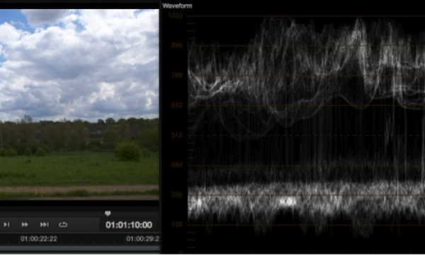 Exposure levels using EI ISO and zebras with the PMW-F5 and RAW